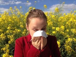 אלרגיה, קדחת השחת, בעיות עור והקשר להיגיינה ונקיון הבית